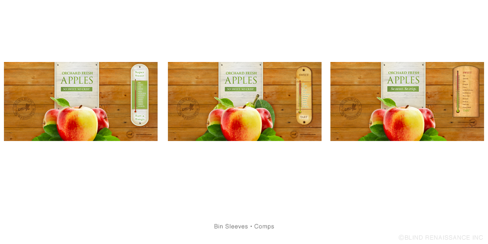 Preliminary ideas for sweet-tart thermometer design used on apple bin sleeves.