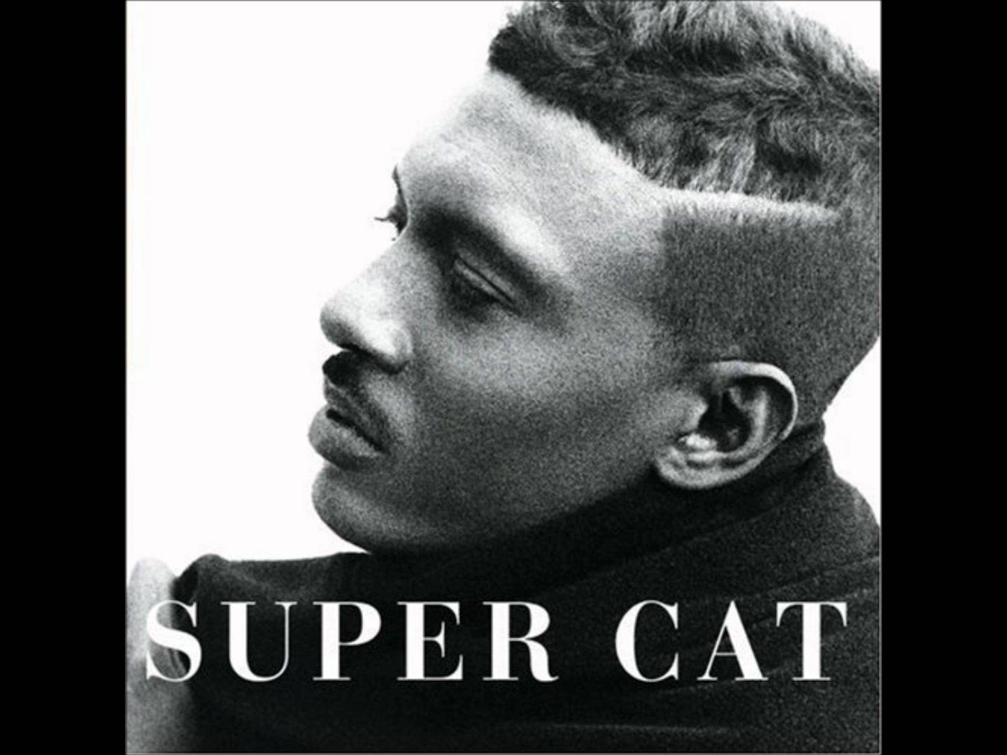 Super Cat looking gorgeous with short hair omg.jpg