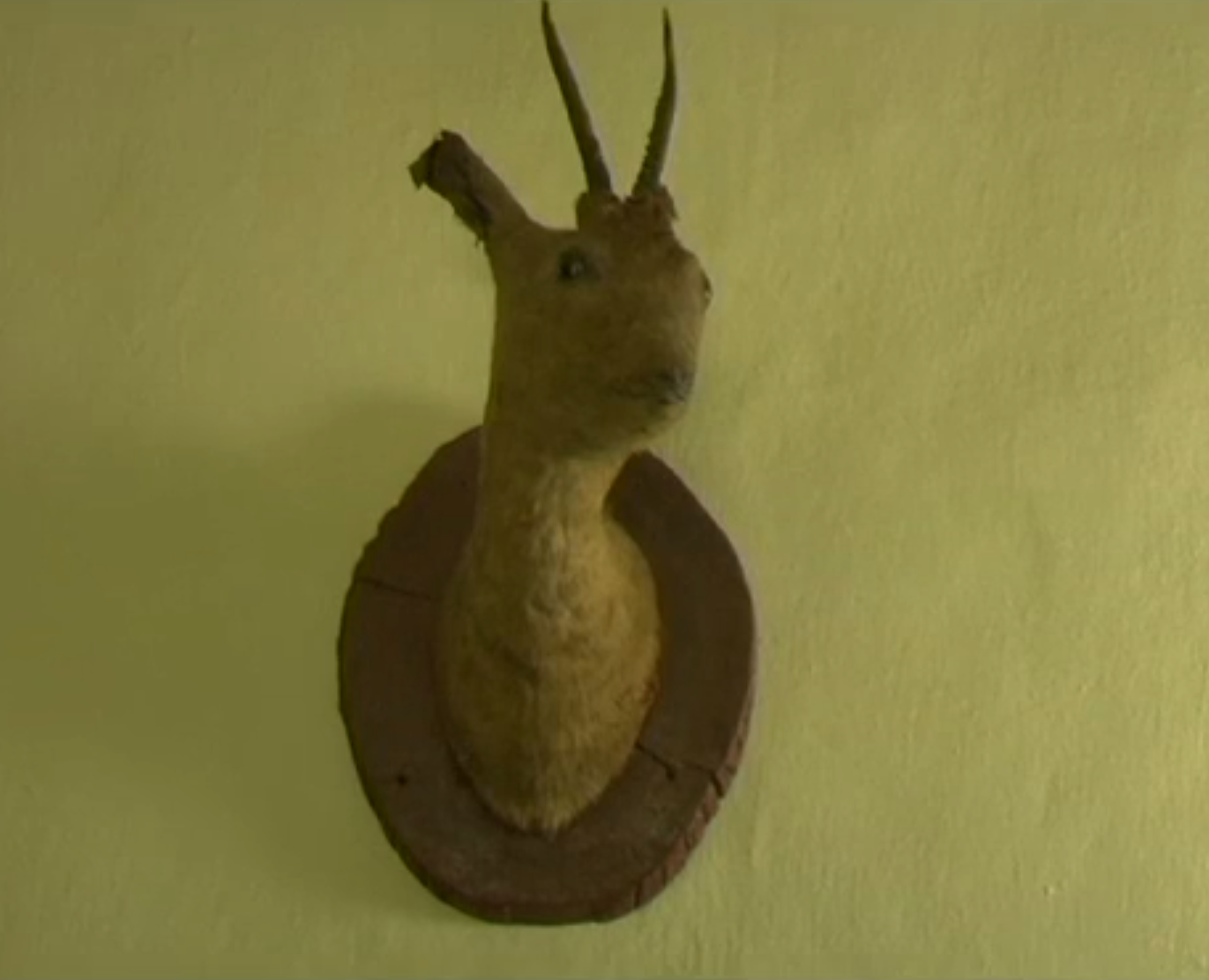 An old deer head mounted on Lysheha's wall in his home. For some reason, I felt a lot of affection for this run-down creature. What a strange beast.