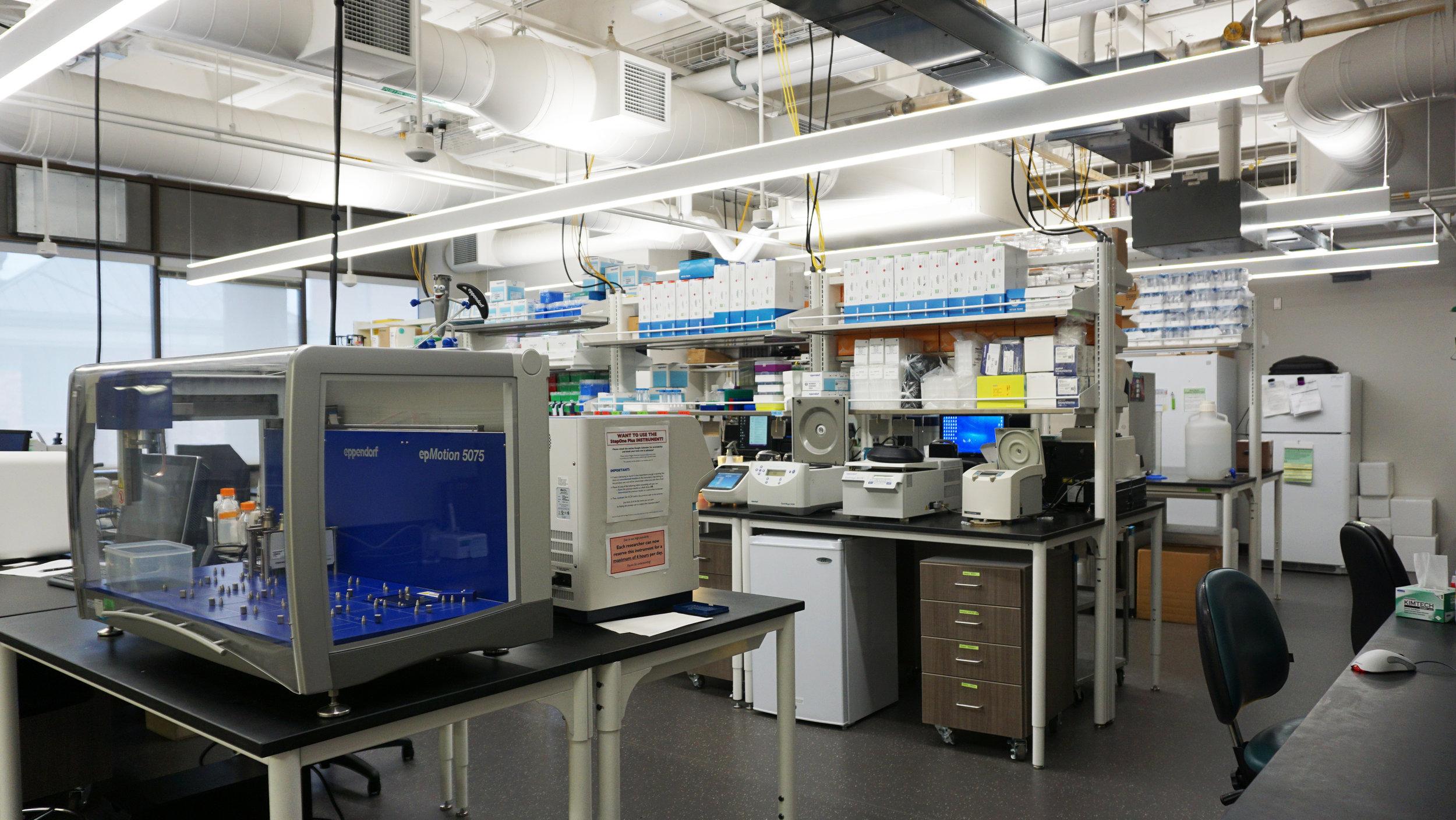 Klamath Lab 1.jpg