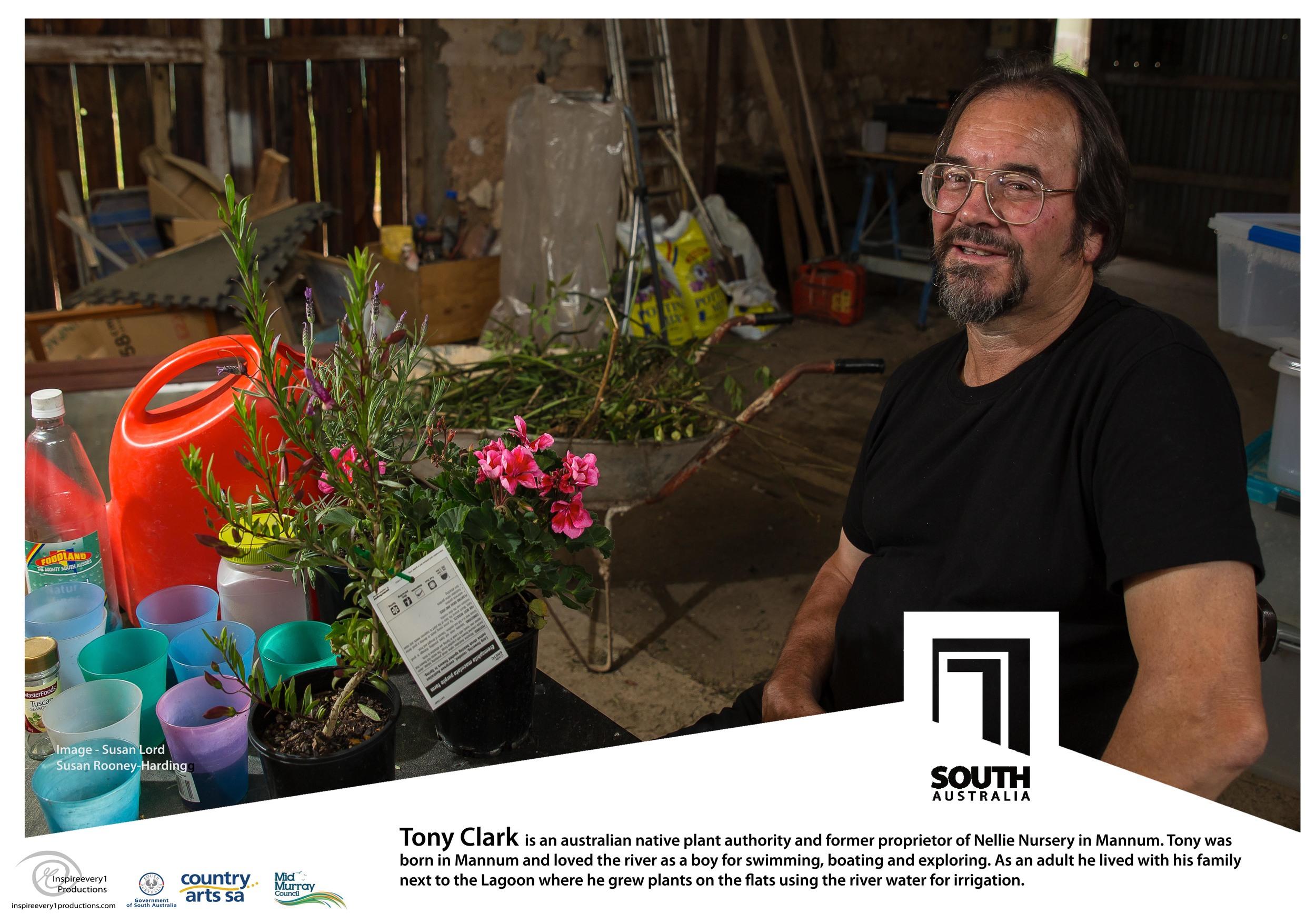 Susan - Tony Clark.jpg