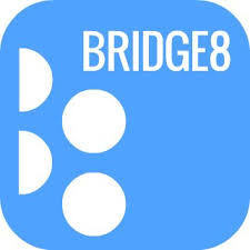 bridge 8.jpeg