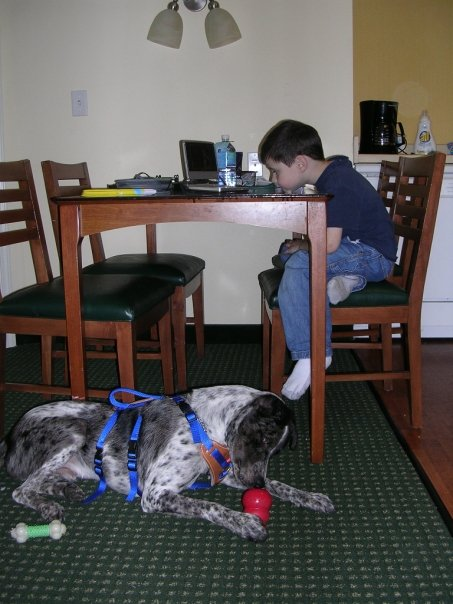 In Ohio, August 2006, when we went to 4 Paws to meet him and train.