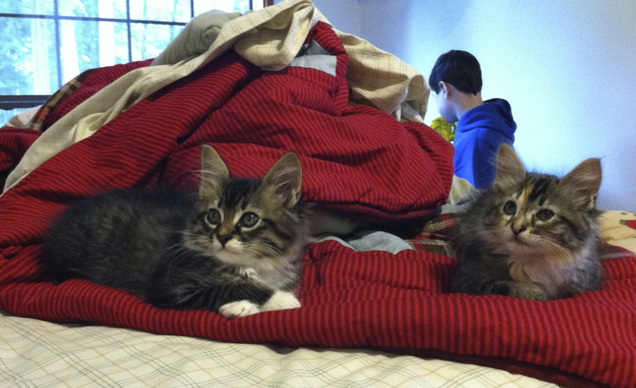 Caught them hanging out in his room when they were still teeny.