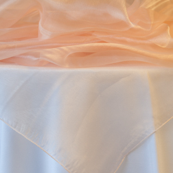 Peach Organza Topper