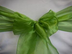 Lime Green Organza Sash