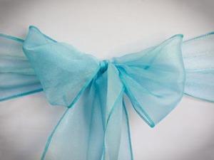 Turquoise Sparkle Organza Sash