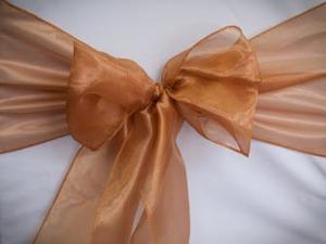Light Copper Organza Sash
