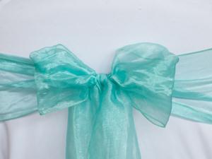 Mint Green Organza