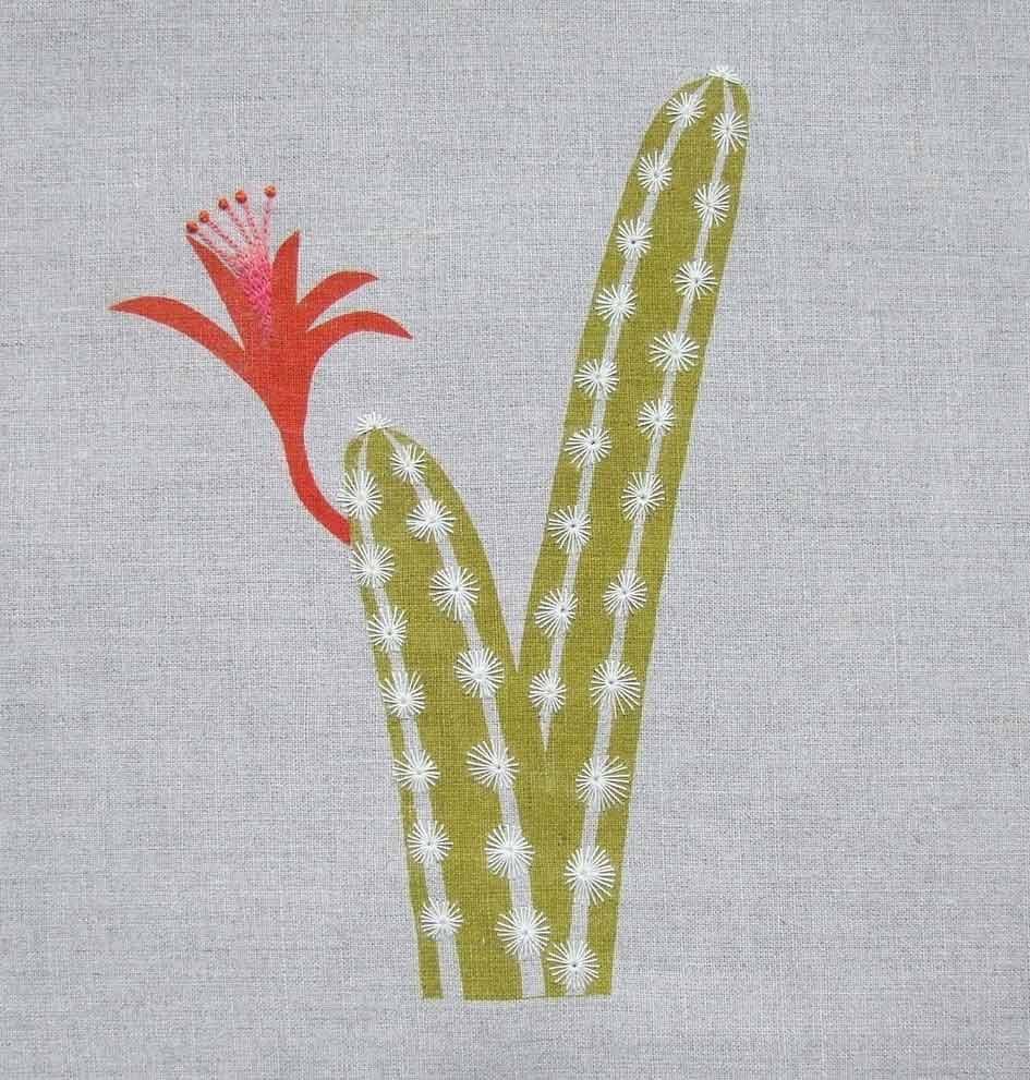 Cactus © Francesca Chalk
