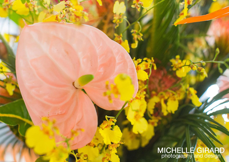 ClassicalTents_BellaFlora_MichelleGirardPhotography03.jpg