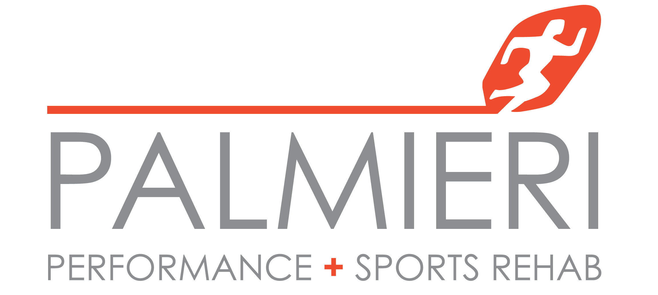 Palmieri Performance + Sports Rehab