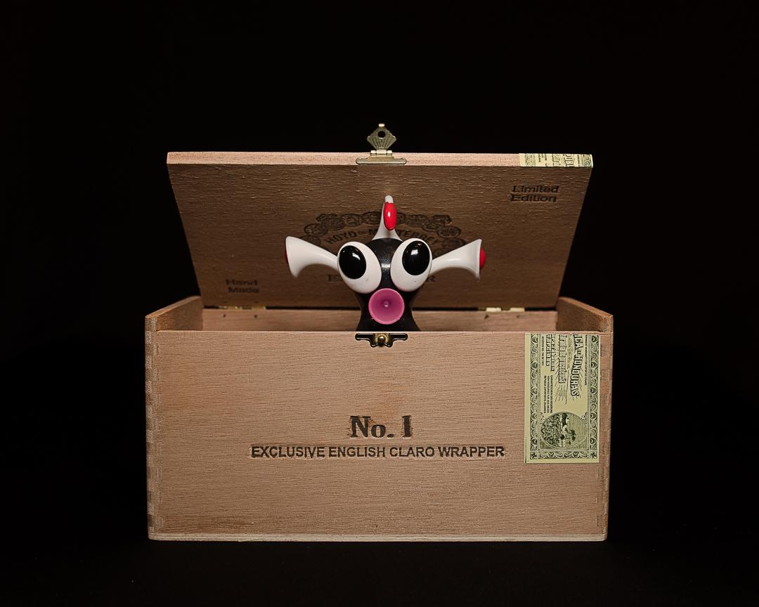 Freak in the box
