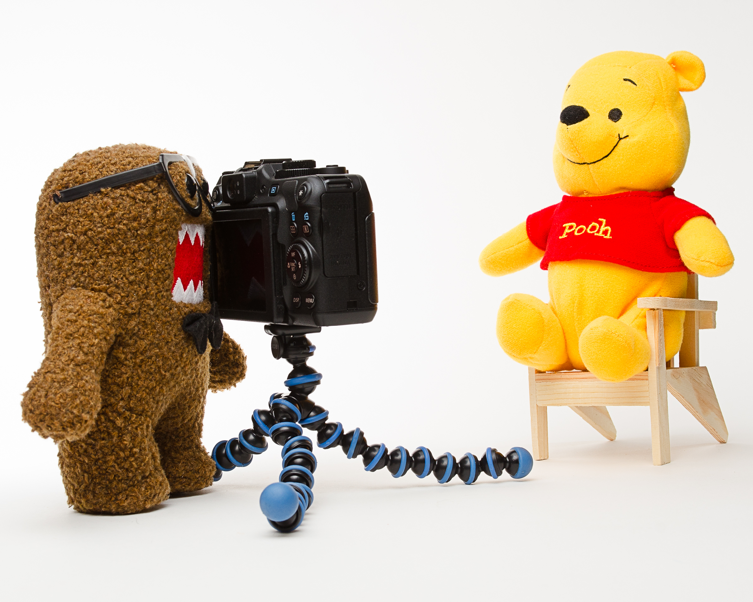 "Poohtographer: ""A Photographer who continues to shoot even though he knows that ultimately all his shots will end up looking like Pooh""."