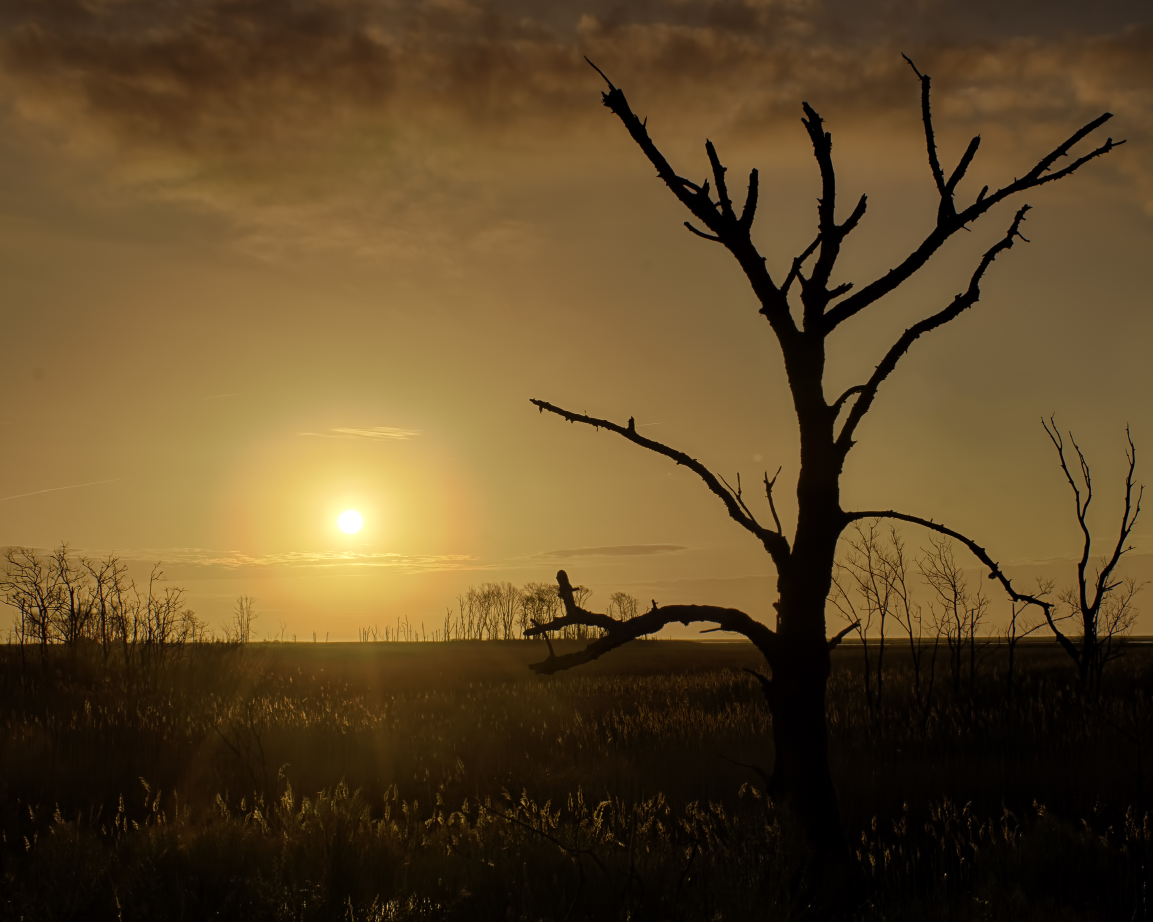 Sunrise at Bombay Hook National Wildlife Refuge on 4-16-2013