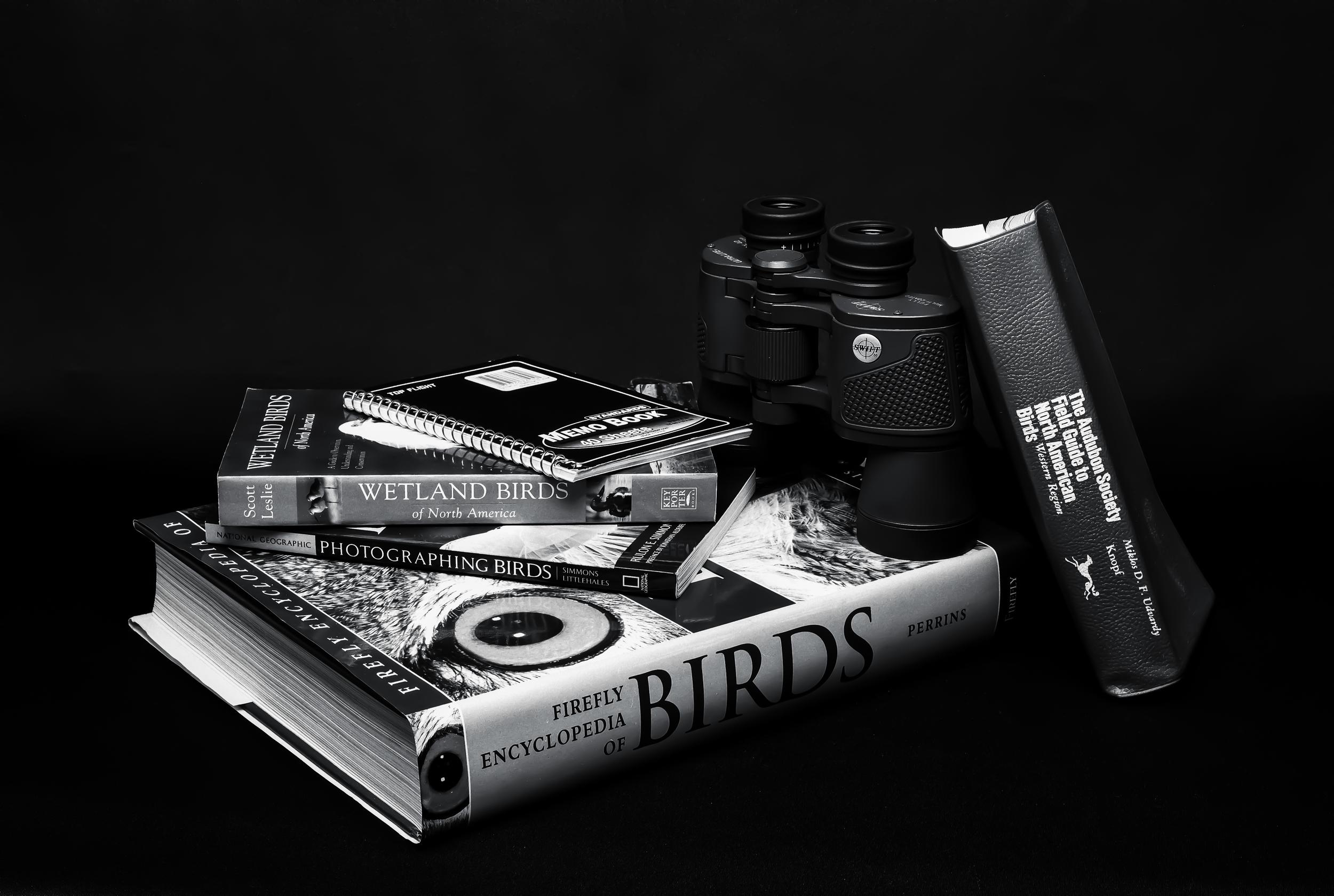 4x5_for_365_project_003_birder_still_life_001_full.jpg
