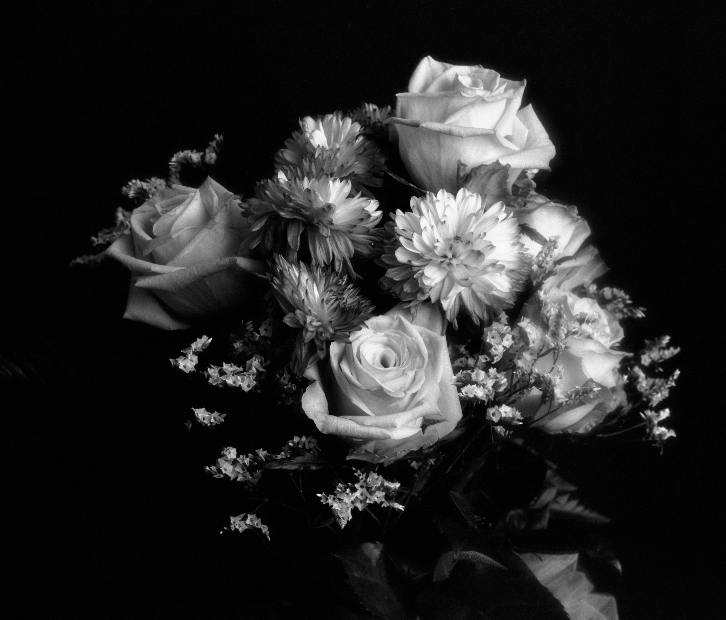 4x5_for_365_project_006_Giant_Bouquet_002_full.jpg