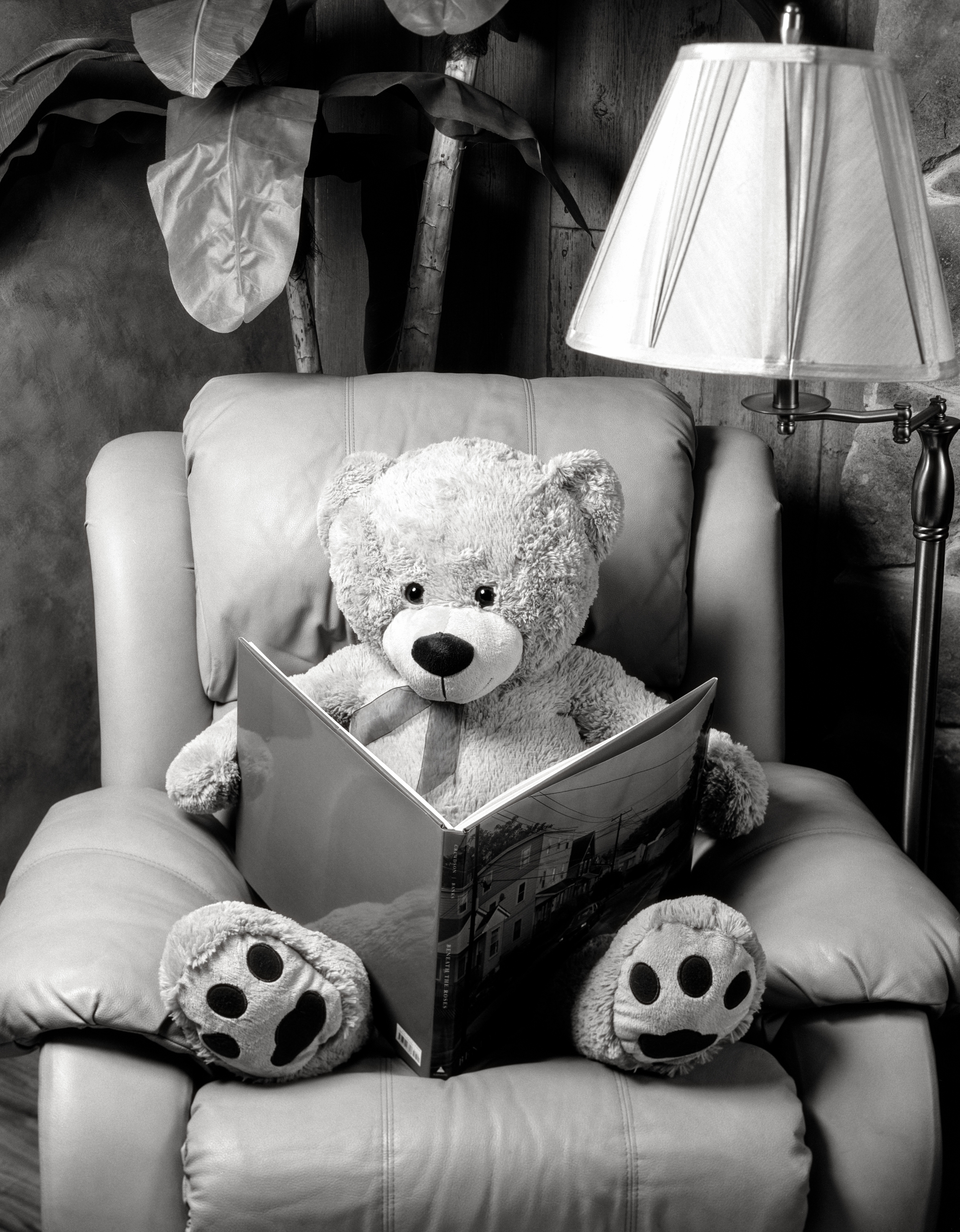 4x5_for_365_project_008_Bearenice_Abbott_Reading_Chair_001.jpg