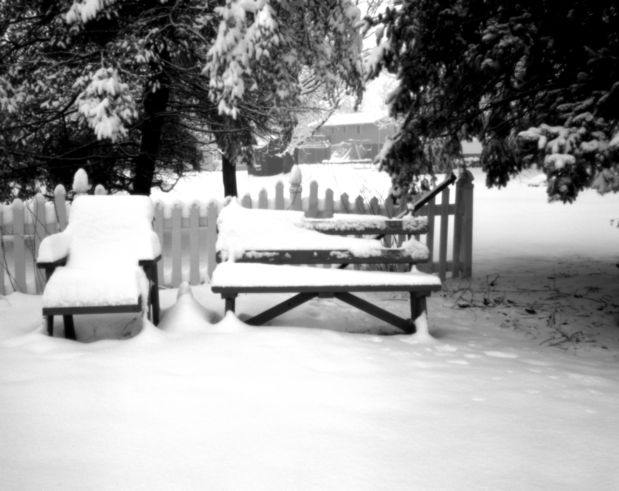 4x5_for_365_project_040_Backyard_Snow_Benches.jpg