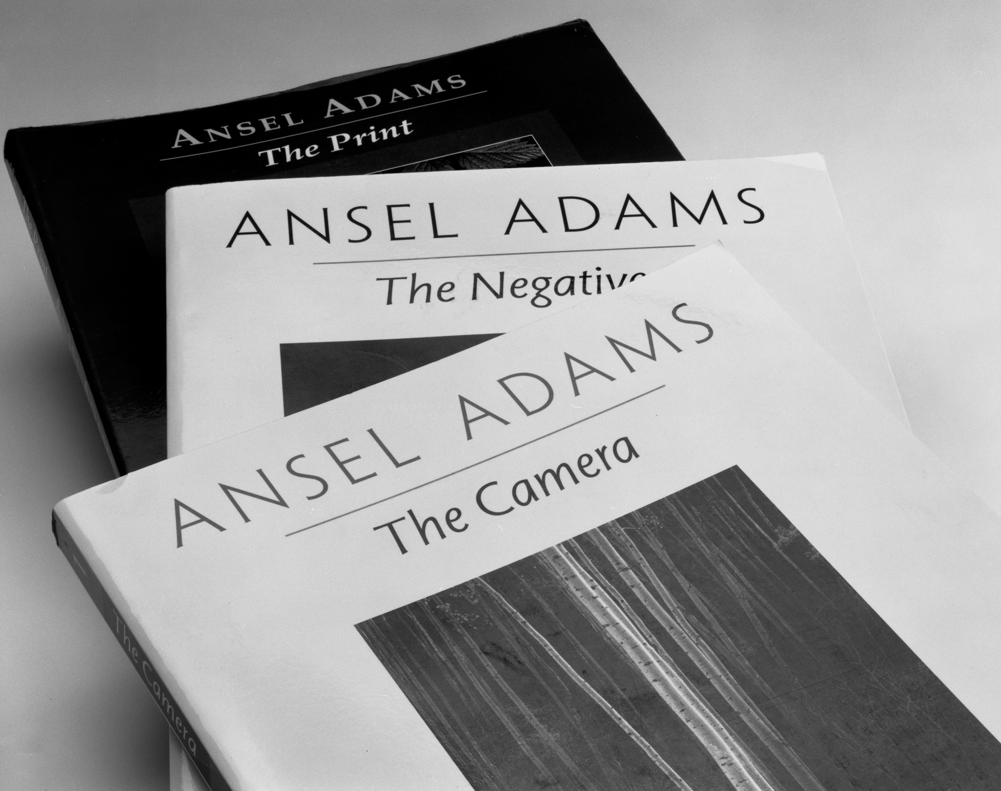 4x5_for_365_project_045_Ansels_Trilogy.jpg