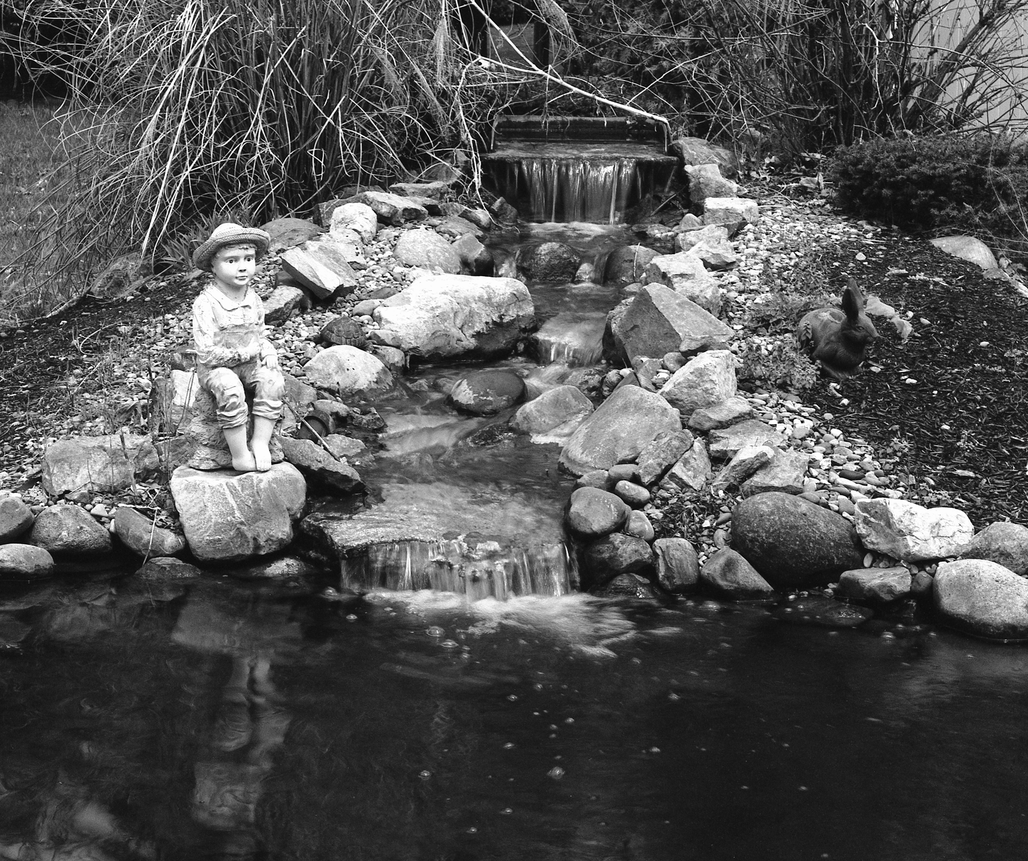 4x5_for_365_project_0107_pond.png