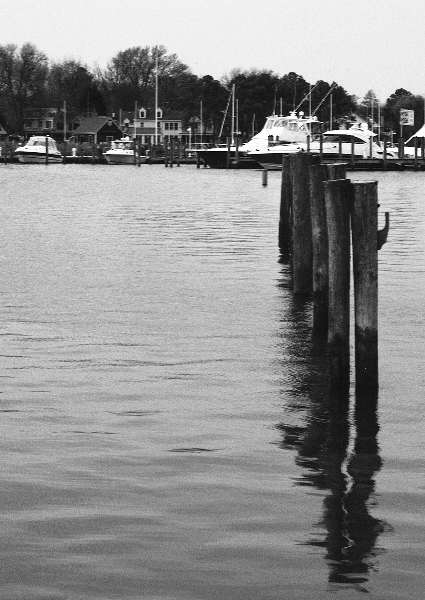 4x5_for_365_project_0109_St_Michaels_Marina.png
