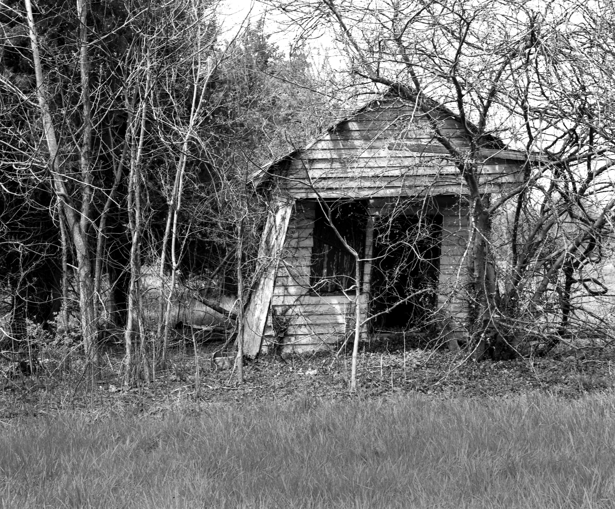 4x5_for_365_project_0110_MDEasternShore_SHack.png