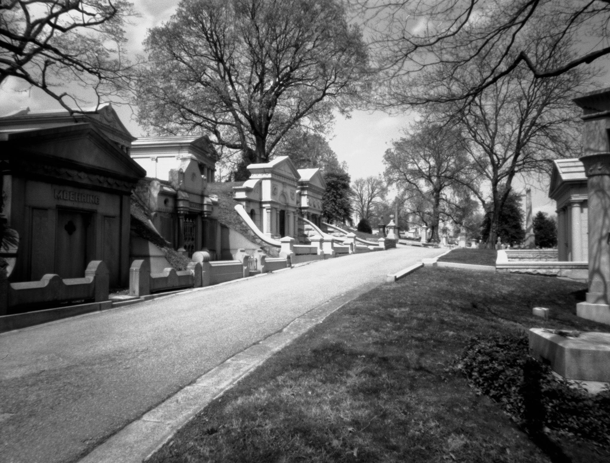 4x5_for_365_project_0123_Laurel_Hill_Cemetery_pinhole.png