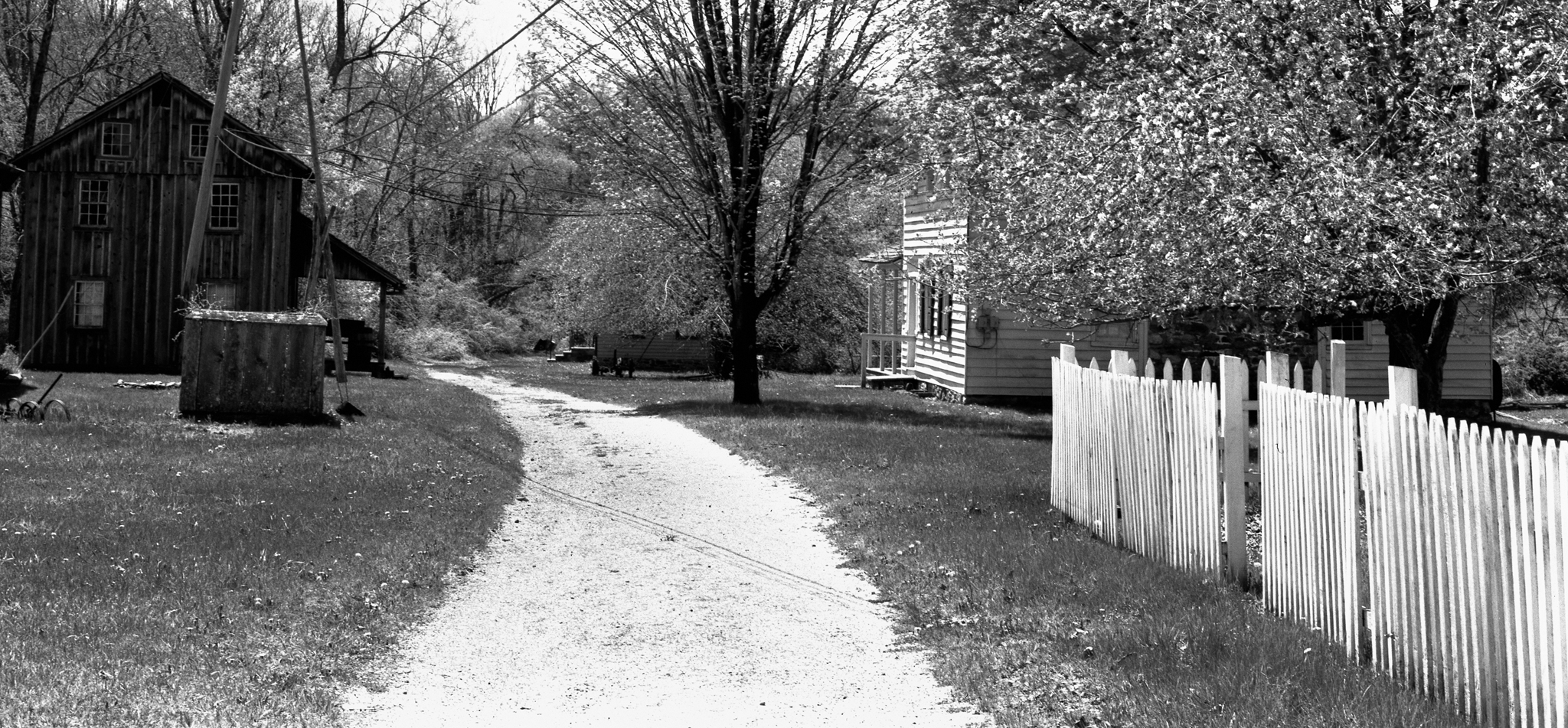 4x5_for_365_project_0135_Millbrook_path.png