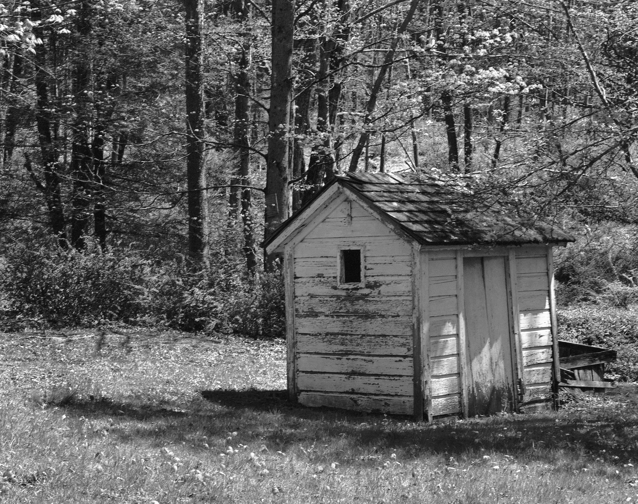 4x5_for_365_project_0136_Millbrook_small_shed.png
