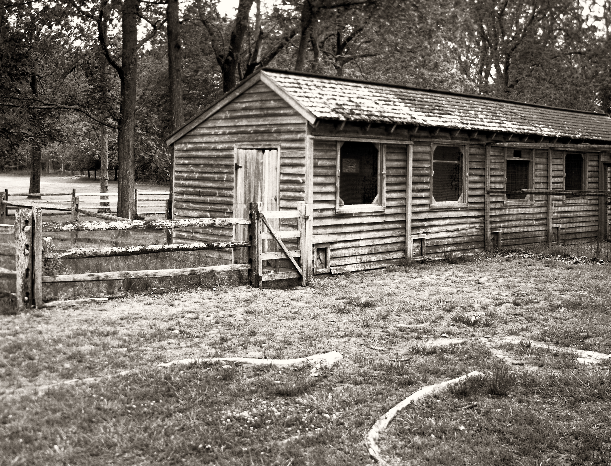 4x5_for_365_project_0147_Batsto_Village_Chicken_Coop.png
