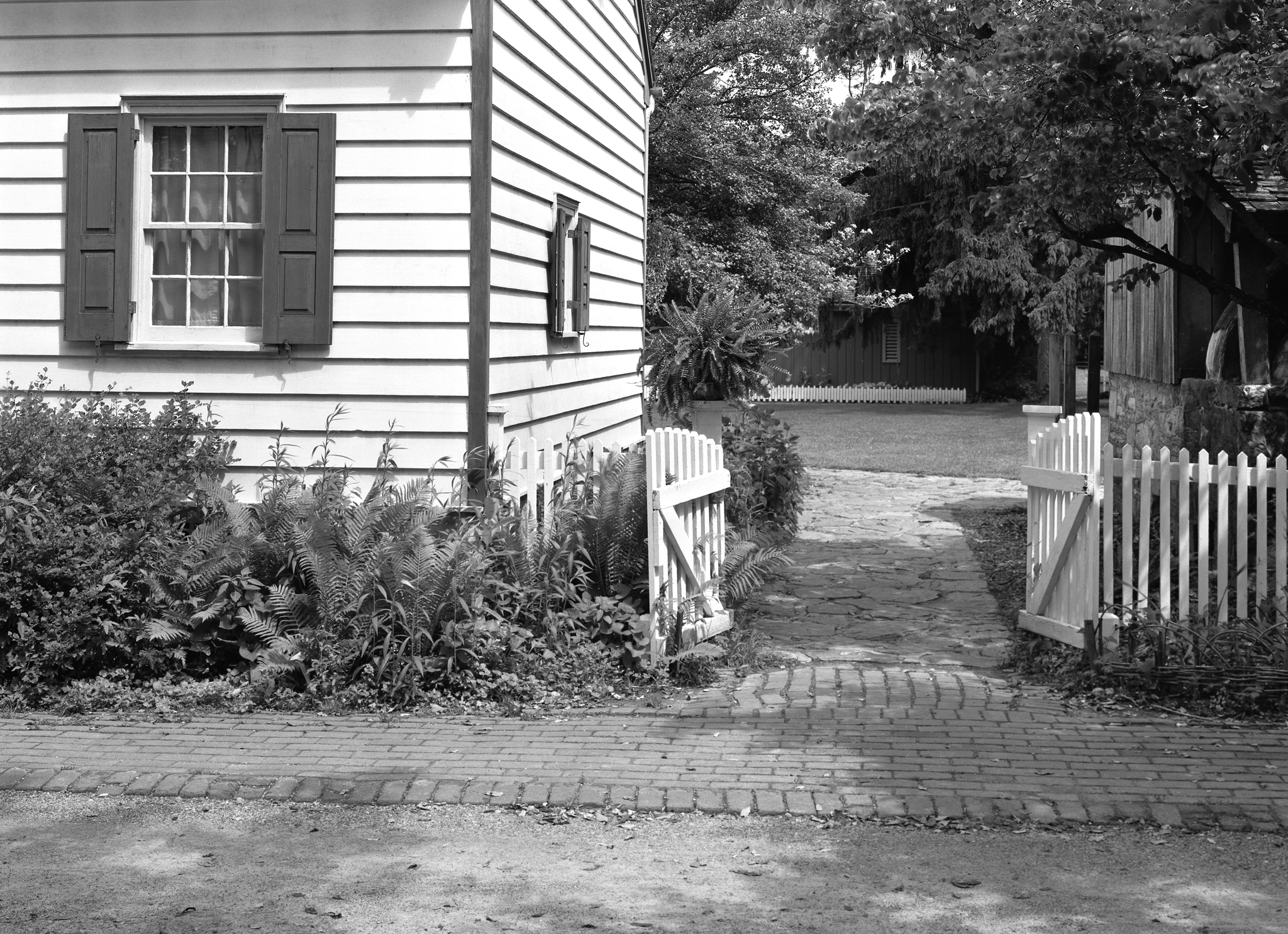 4x5_for_365_project_0184_Landis_Valley_picket_fence.png