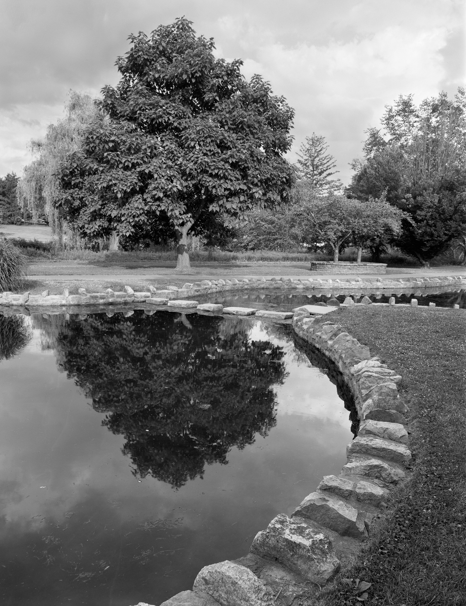 4x5_for_365_project_0194_AllentownRoseGarden_reflecting_pool.png