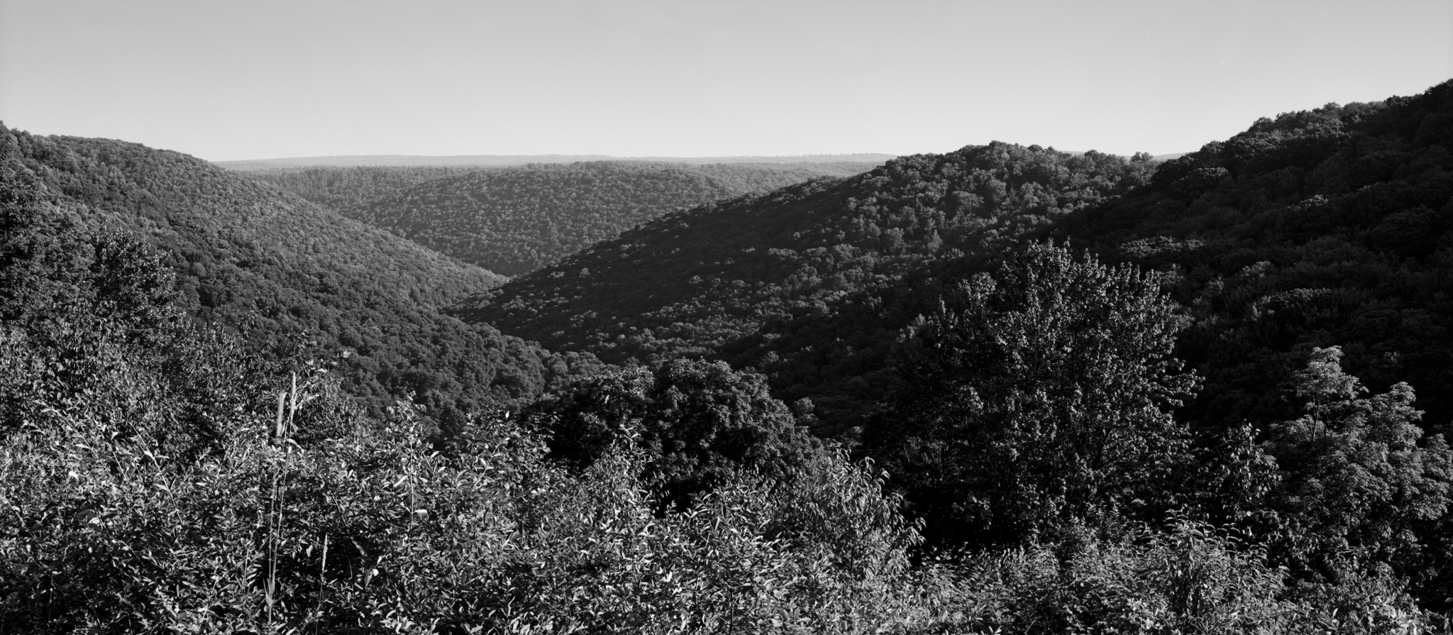 4x5_for_365_project_0198_water_tank_overlook.png