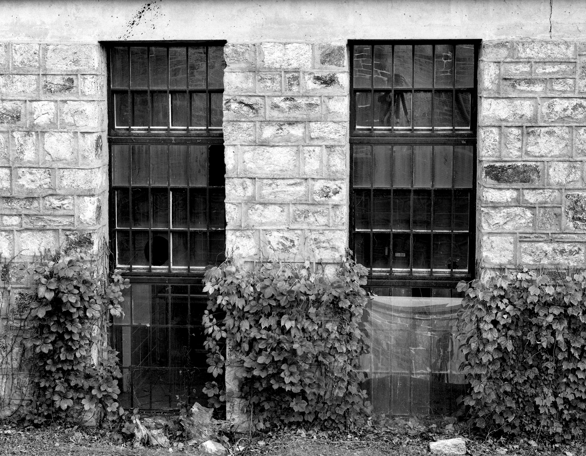 4x5_for_365_project_0276_esp_outer_bldg_windows.png