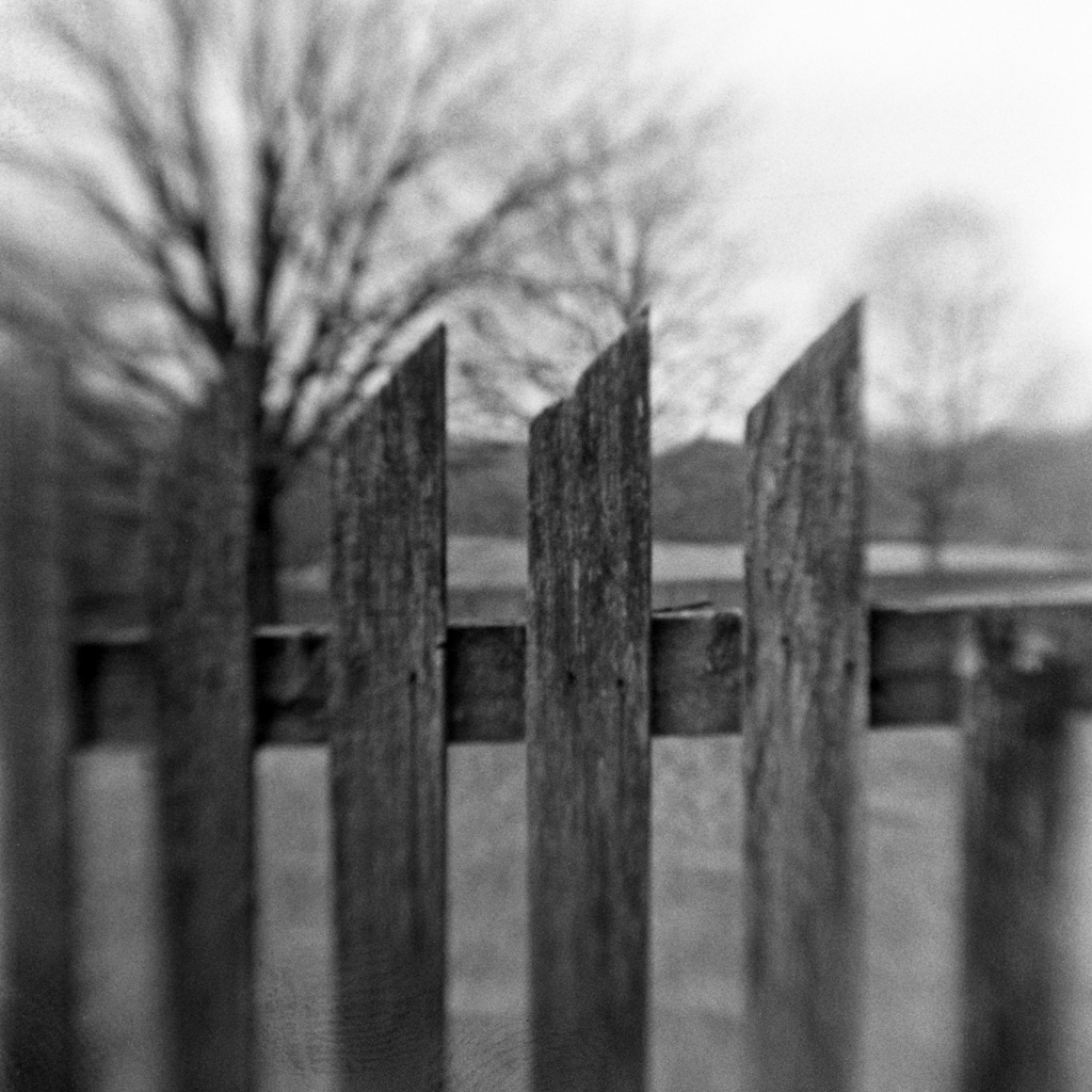And when I awoke I found these fences had  appeared to come to me not as a symbol of restrictions but rather as a challenge, a new stream to cross, a new fence to jump. I must remember to wear my good running shoes today.