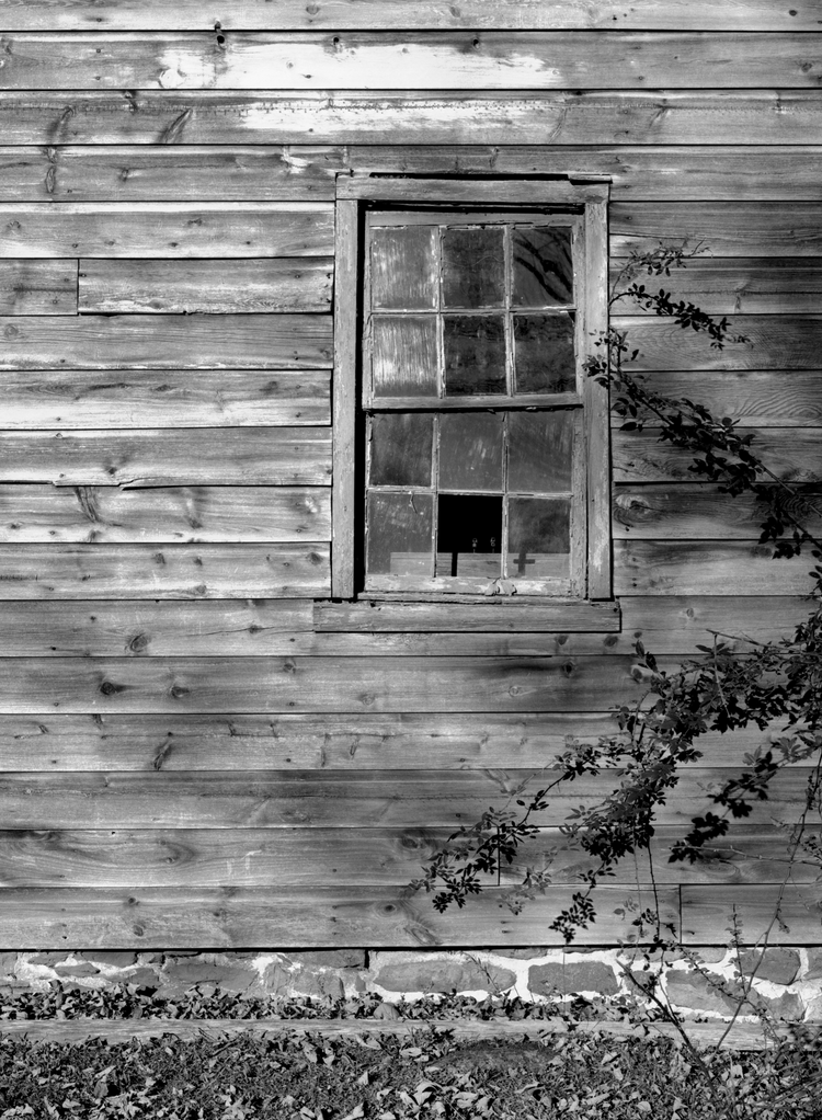 4x5_for_365_project_0291_Millbrook_open_window_pane.png