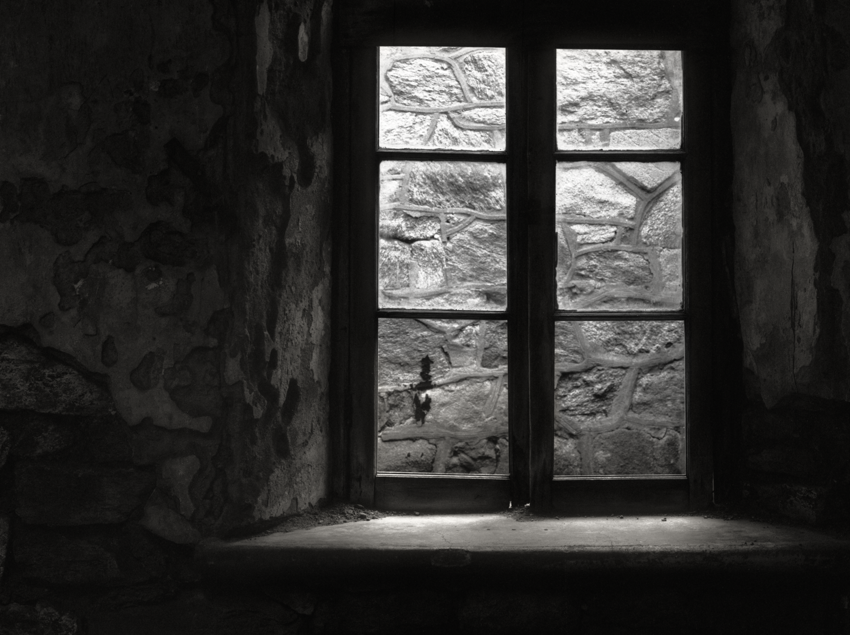 ESP_2015--03-15_Toyo4x5_150mm_EktascanBRA_Rodinal_sunlit_window.png