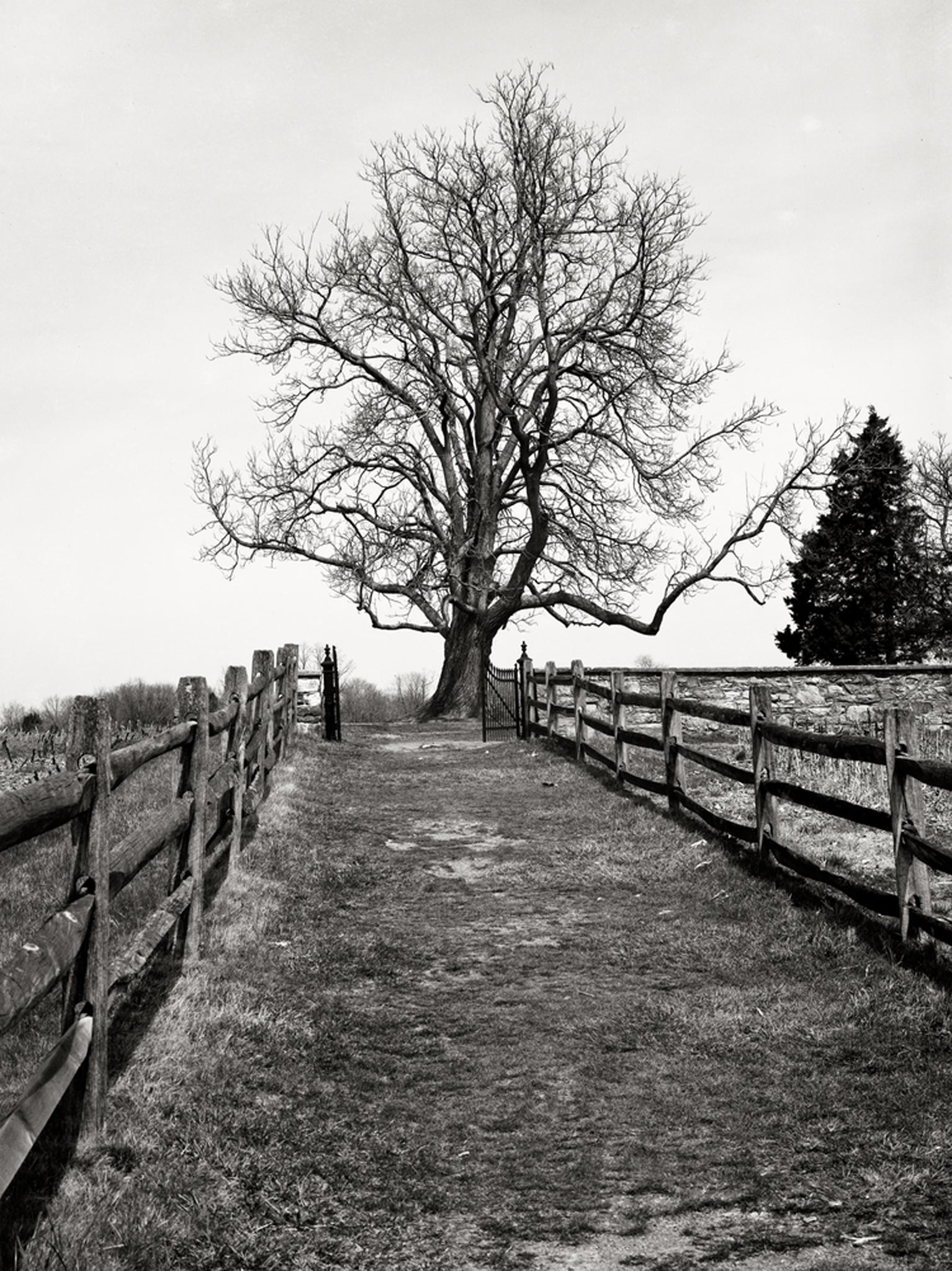 Path to family cemetery on Mumma Farm at Antietam.