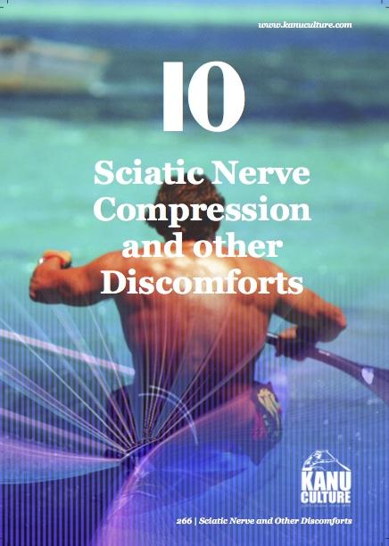11. Sciatic Nerve.jpg