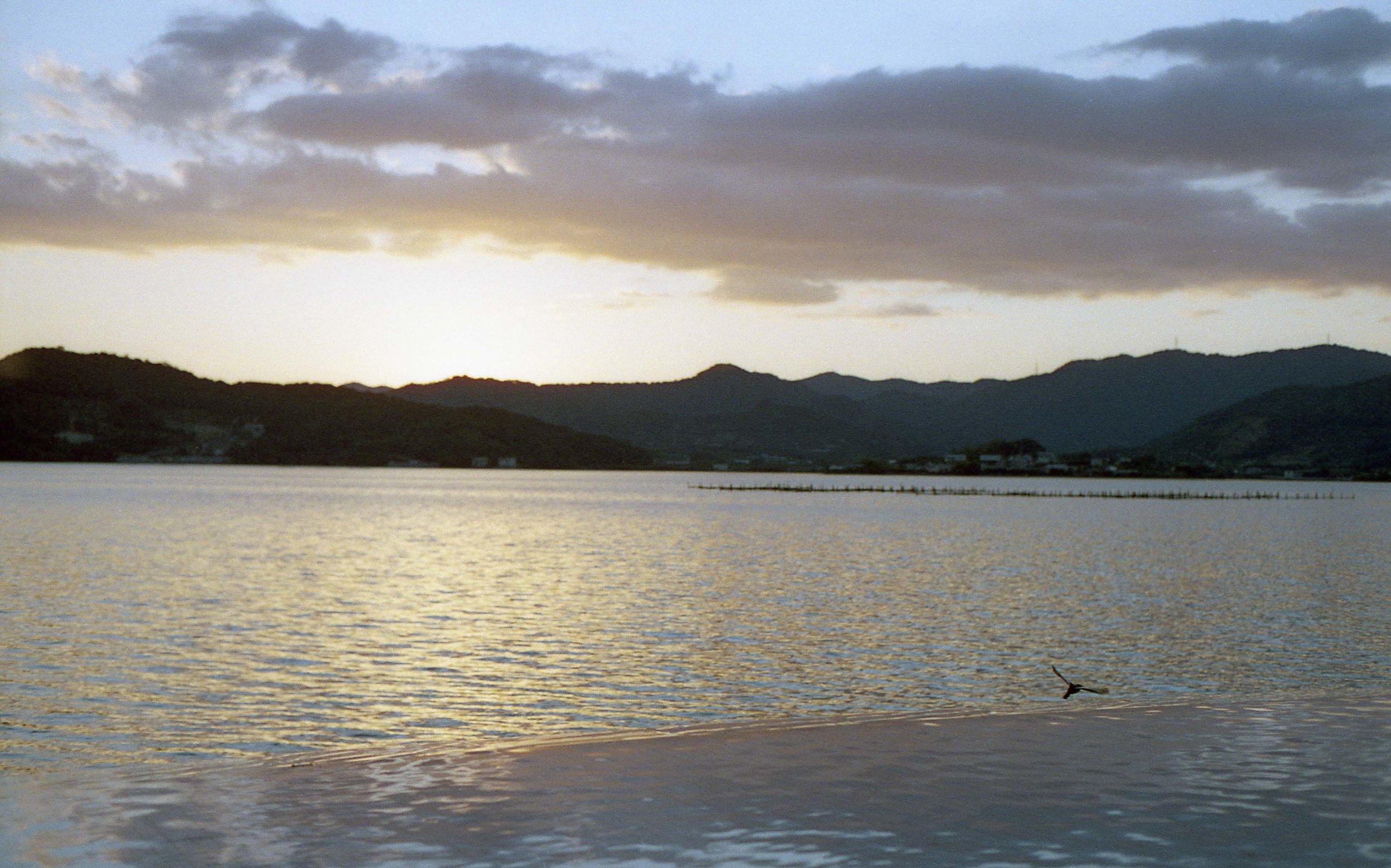 「猪鼻湖夕景」