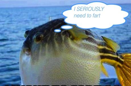 NeedToFartSoBad copy.jpg