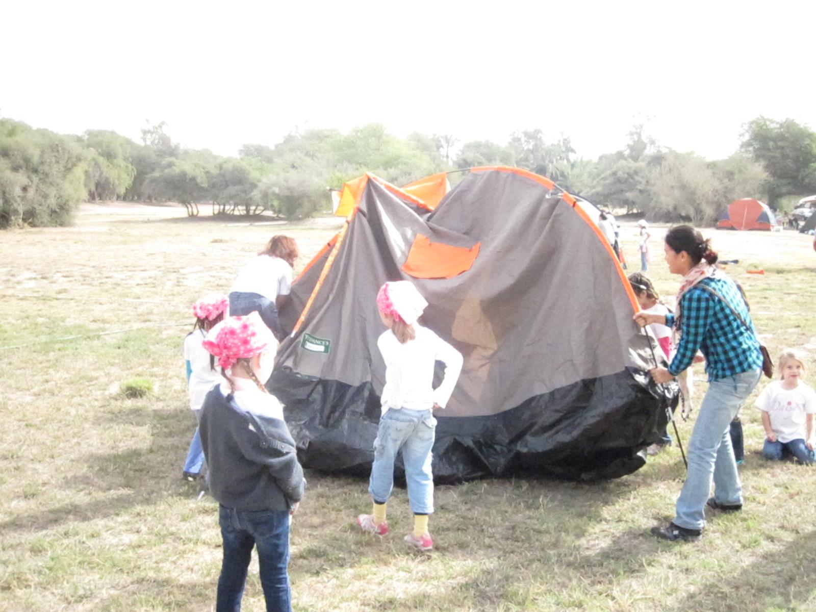 Setting up the tent ... Al Shahaniya 2012