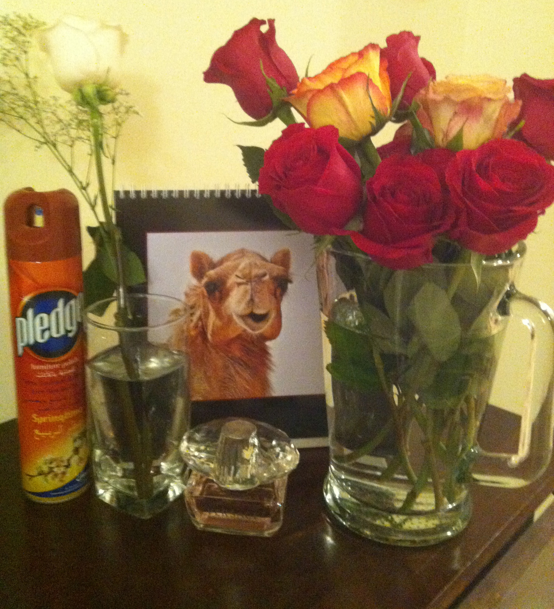 Pledge and roses ... for a bit of shine.