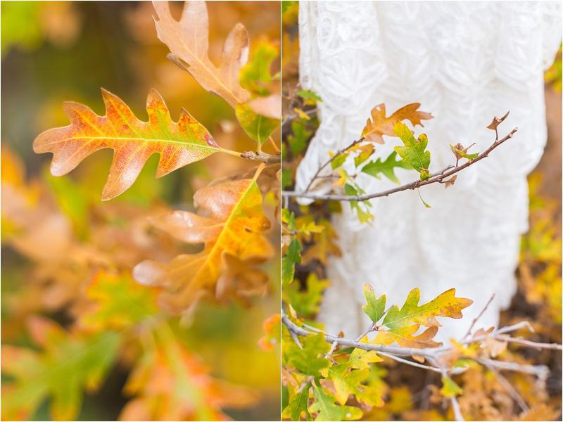 2014-11-23_0001.jpg