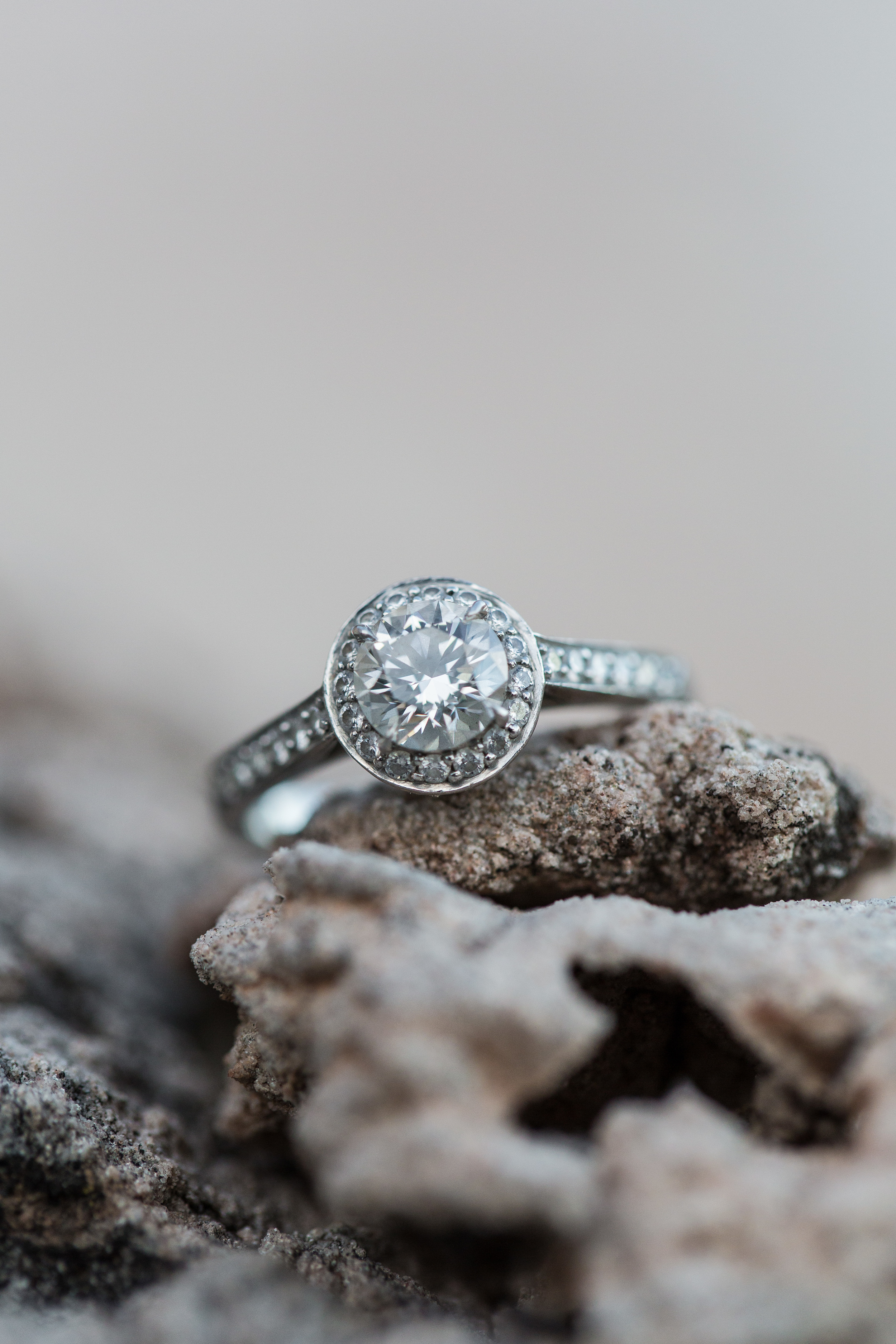 LexiJaceEngagements (54 of 76).jpg