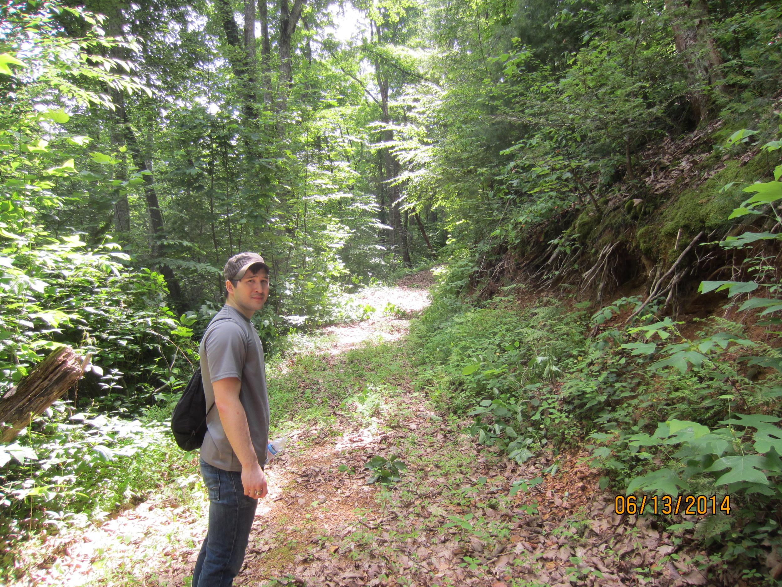 Horse trail prepared for beginning of Camp Arrowwood.