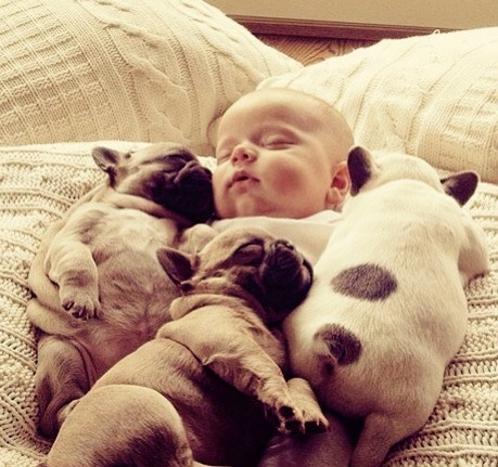 Not much is better than a cute baby or puppies. Put them together? GENIUS!!
