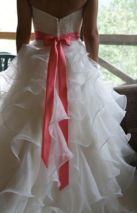 Back of the Dress.jpg