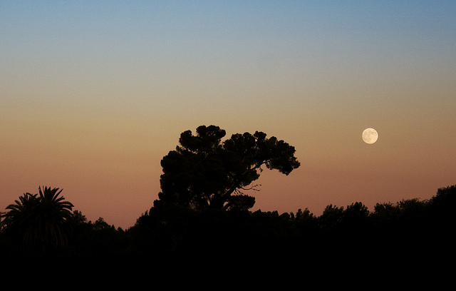 Californian Moonrise